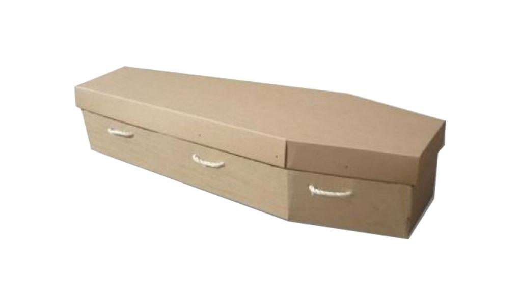 Cardboard Coffin